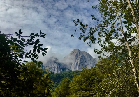 Granite peaks through the veils of clouds and forest